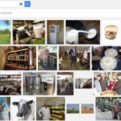 internetagentur-muenchen-google-seo-bilder-indexierung-2015-11-25-rohmilch-landkreis-ffb-schlagheck